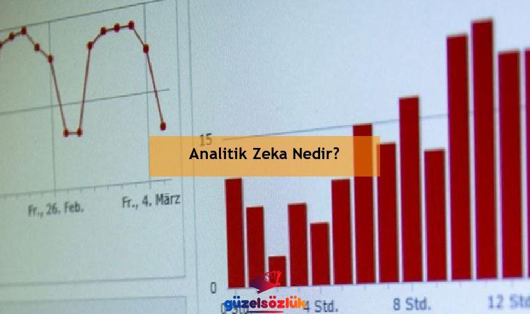 Analitik Zeka Nedir?